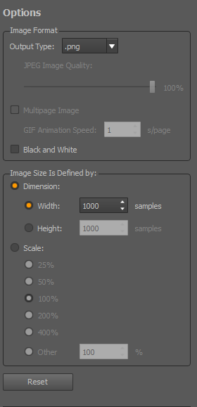 Image format options