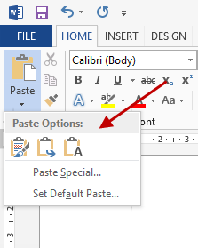 Word Paste Options