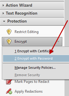 Acrobat Encrypt Password Option