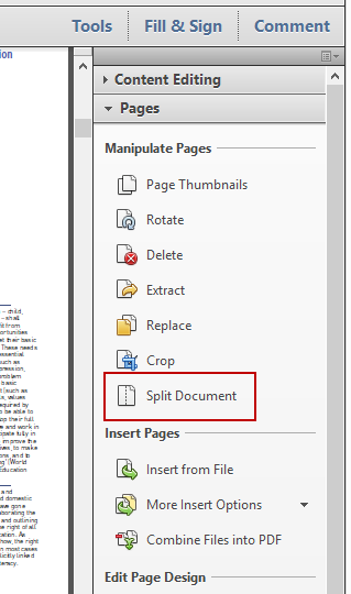 Split Document Option