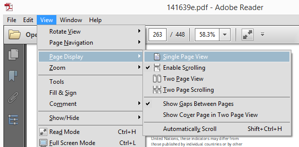 Adobe Page Display Options