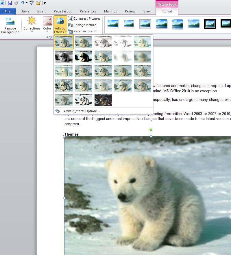 Artistic Effects and visual options for pictures in MS Word 2010